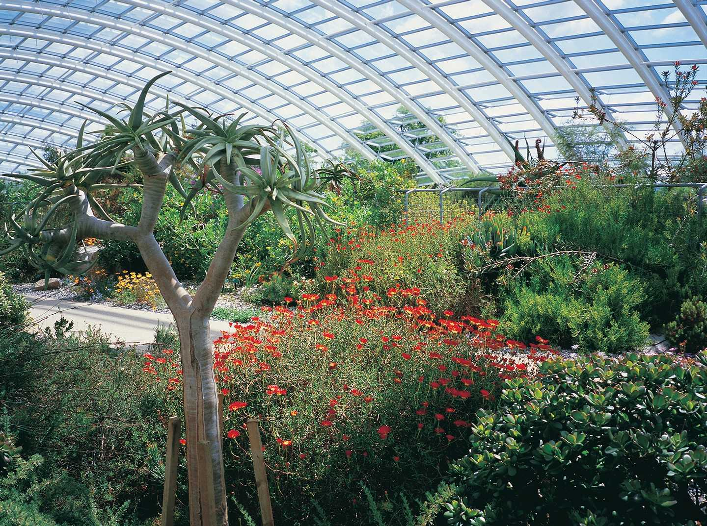 Interior of the National Botanic Garden of Wales