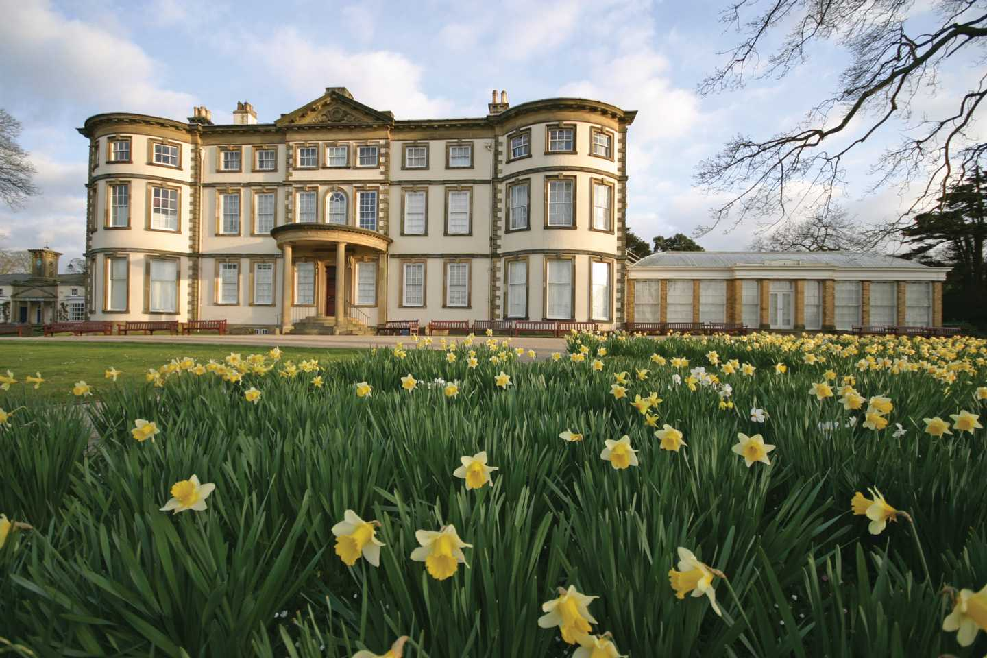 Sewerby Hall surrounded by daffodils
