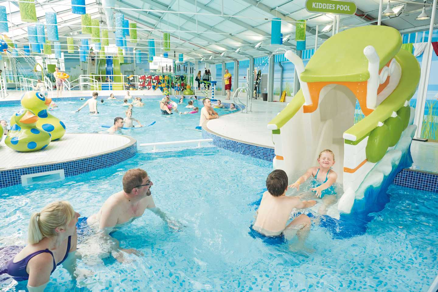 Guests playing in the indoor pool