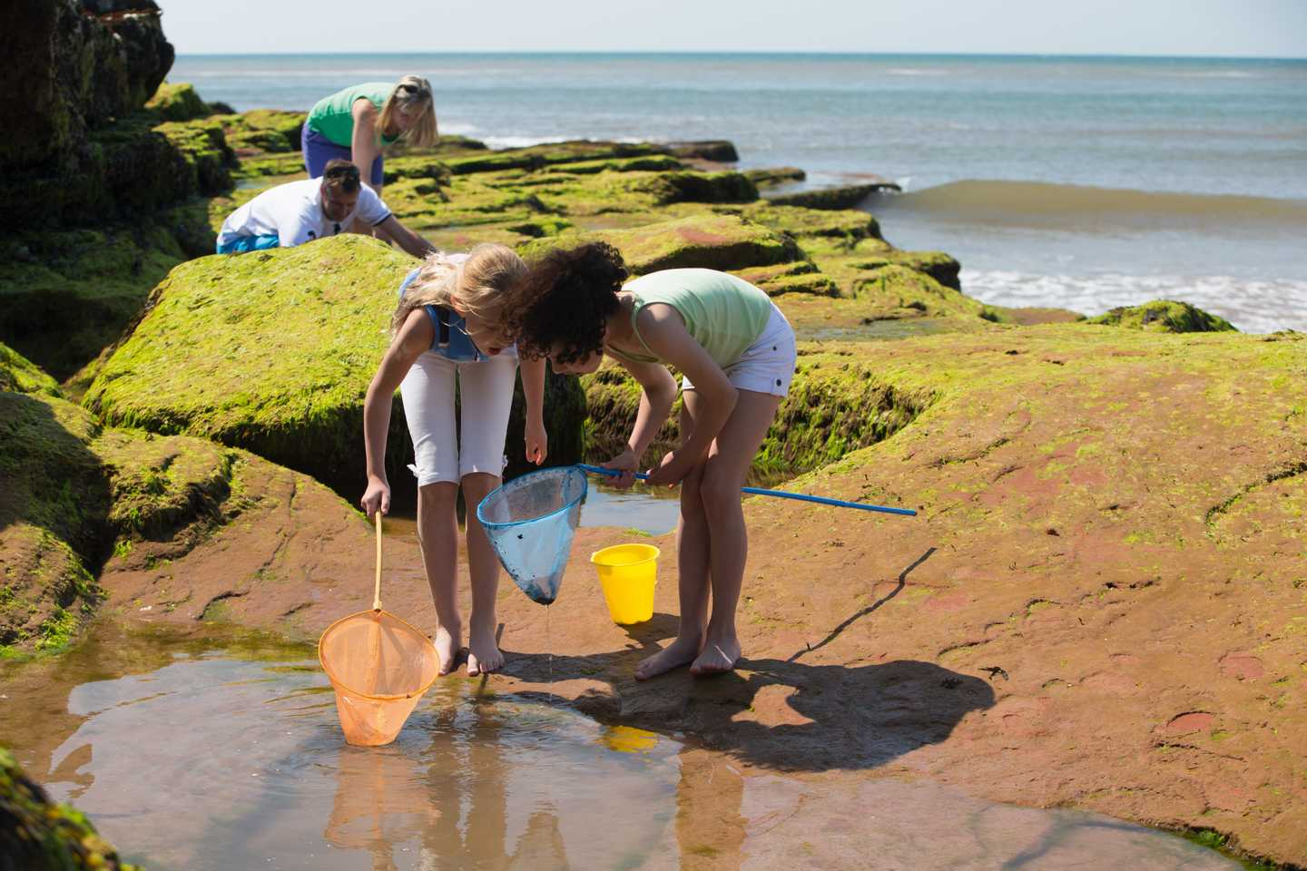 Family rock pooling with their nets on the Devon Cliff rocks