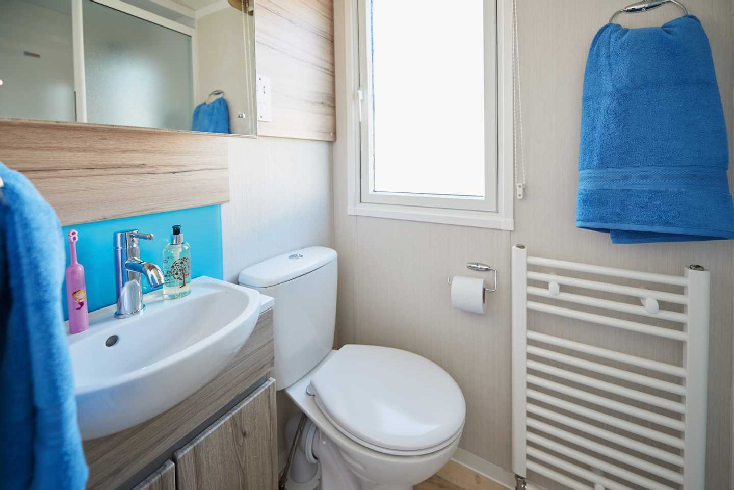 A newer Prestige caravan bathroom with a heated towel rail, toilet and sink