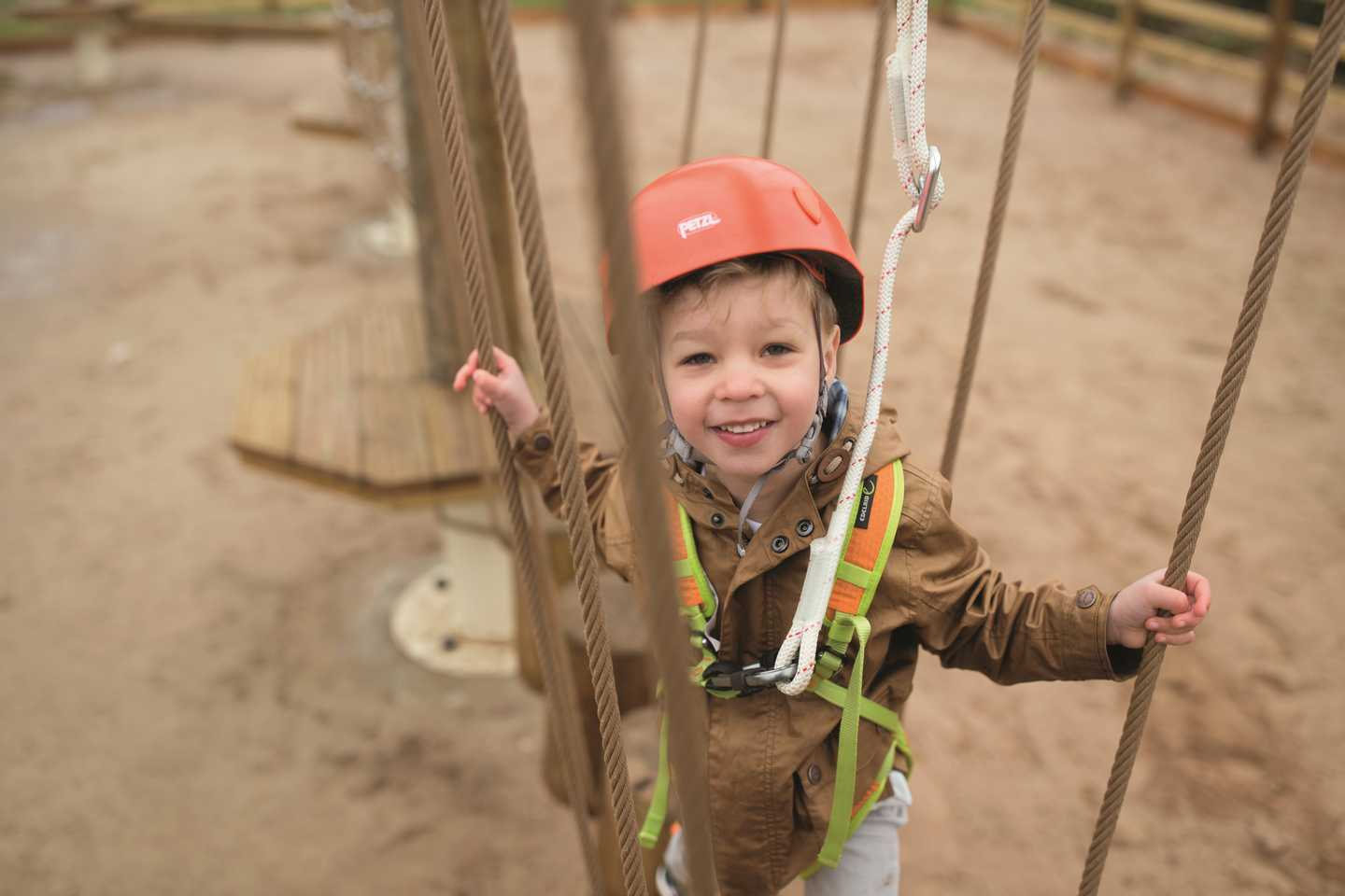 A boy on the Mini Aerial Adventure