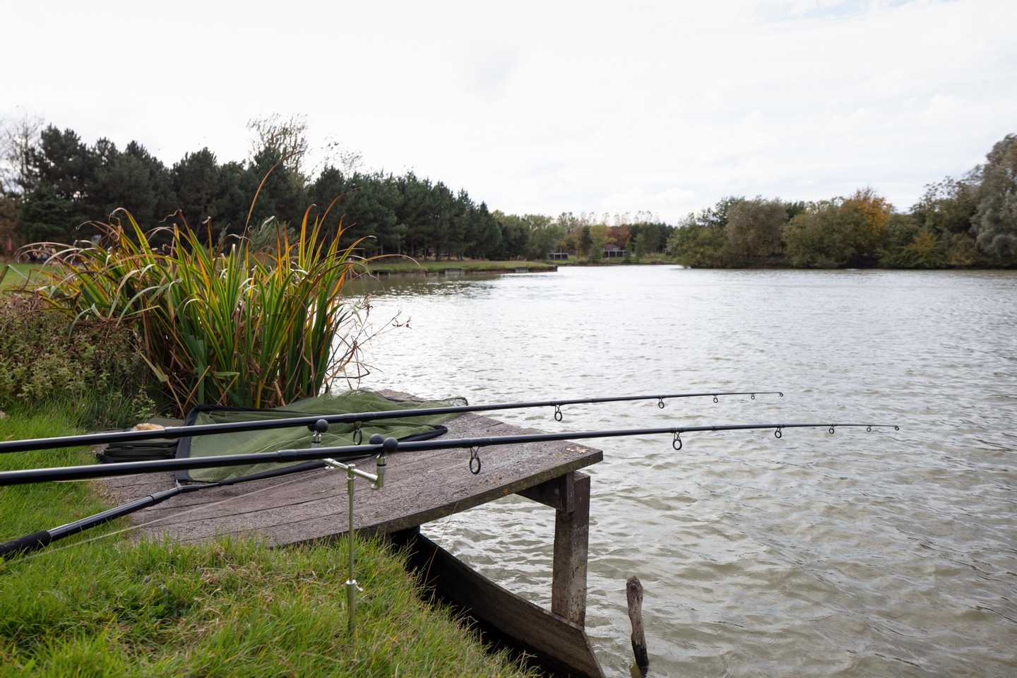 There's something for everyone on our fishing lakes.