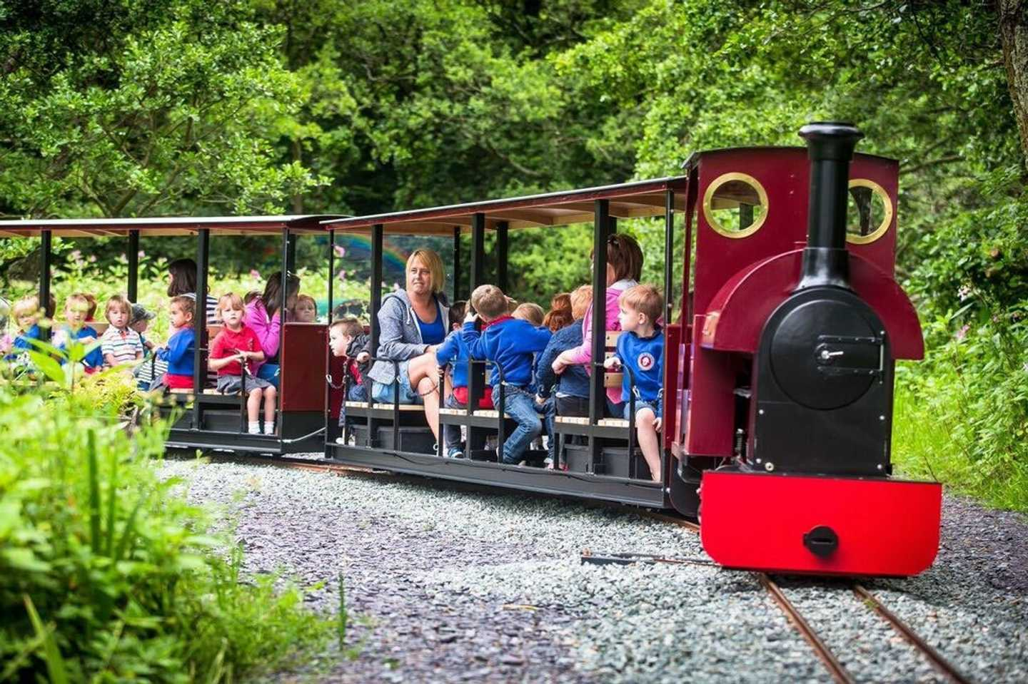 Train at Gypsy Wood