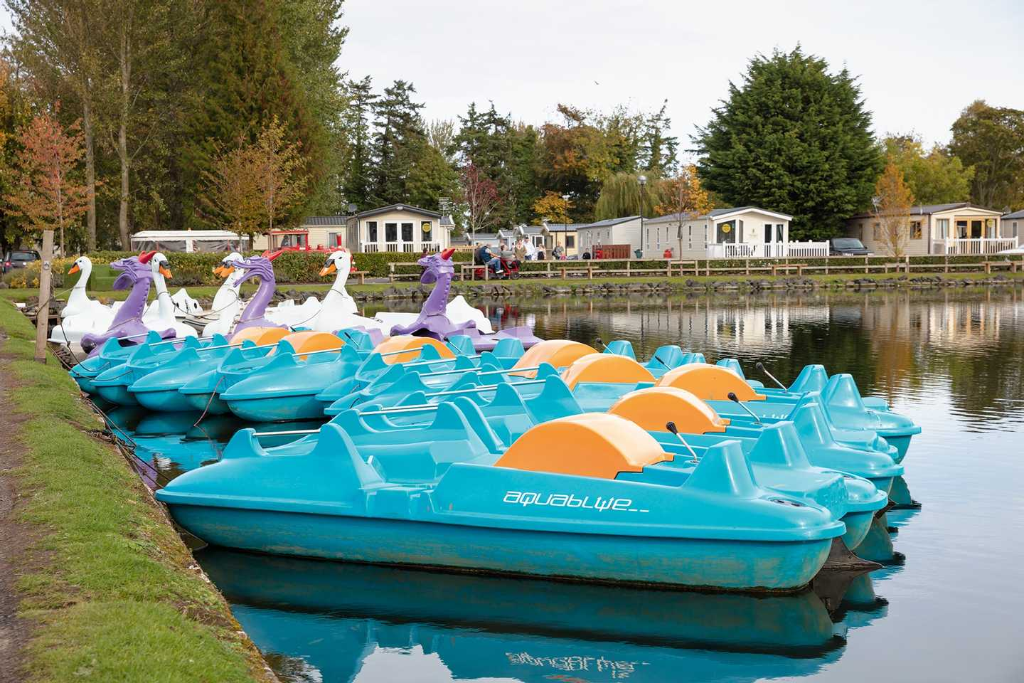 Guests pedalling a swan pedalo on the boating lake