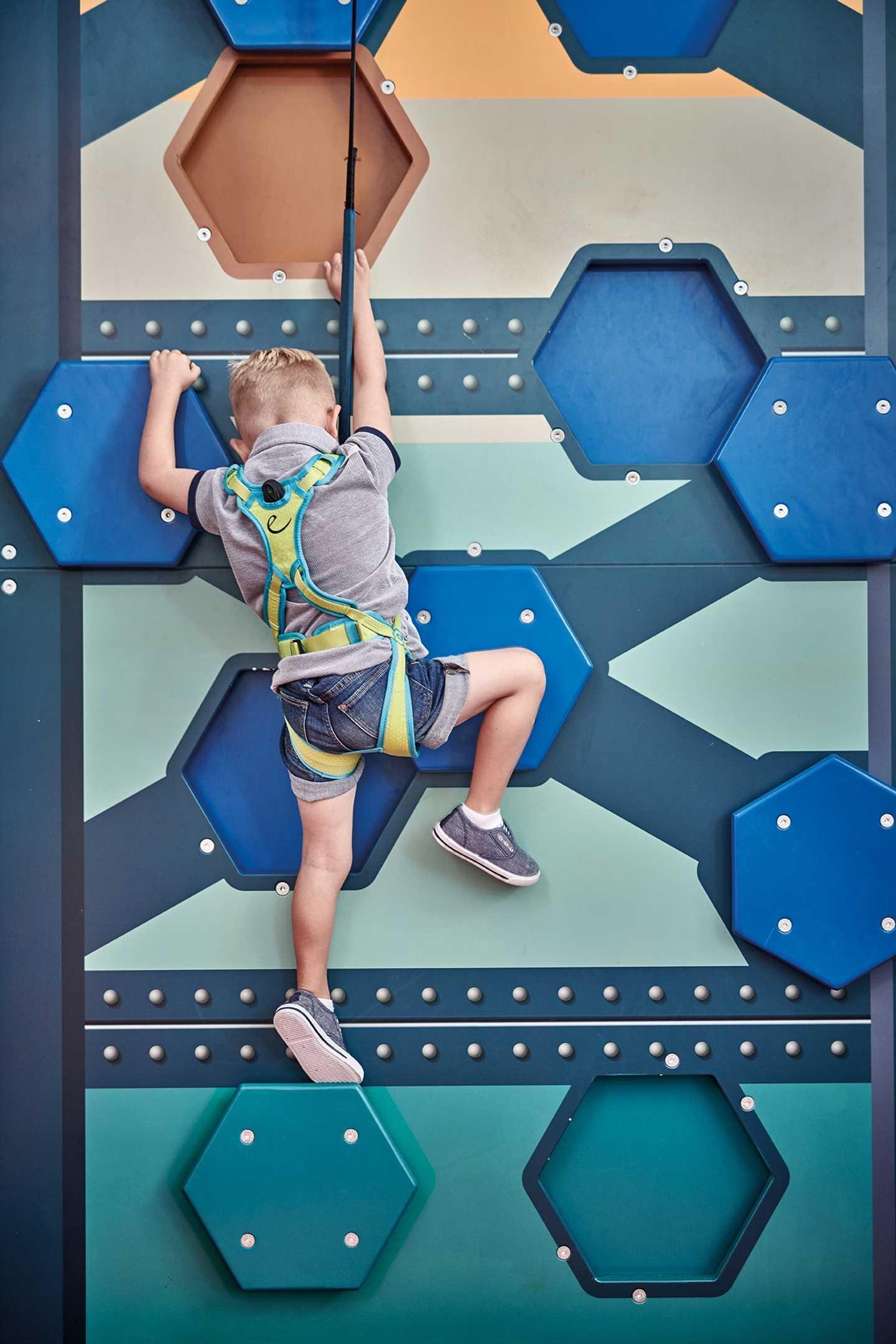 Mini Crazy Climber