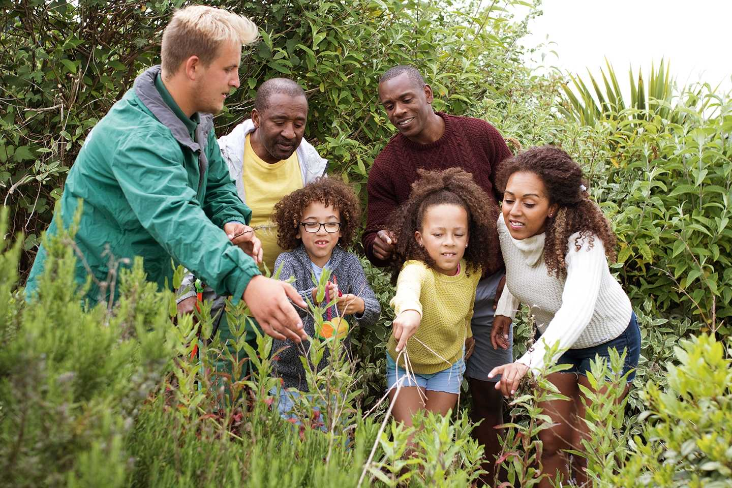 Family learning how to hunt bugs at our Nature Rockz bug hunt activity