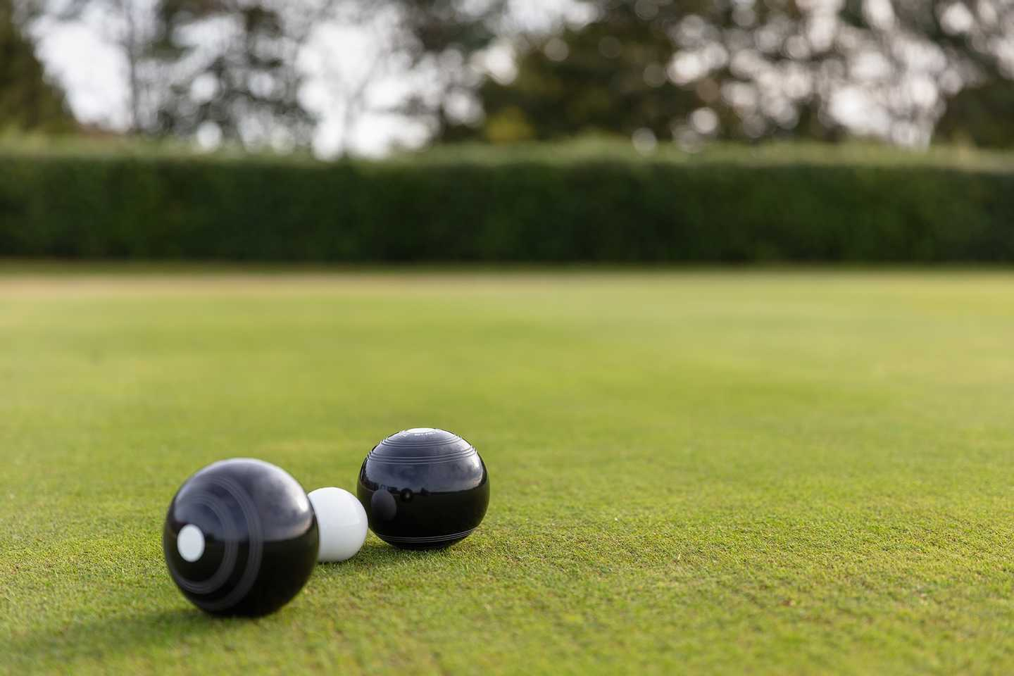 Two bowls on the bowling green