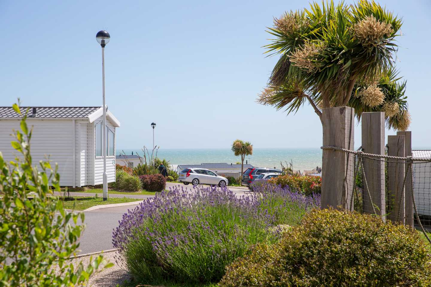 A sea view from a landscaped area of the Sea View Village at Combe Haven Holiday Park with lavender bushes and a palm tree