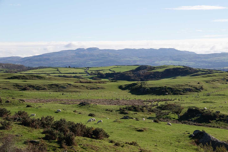 The view at Greenacres