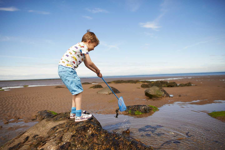 Boy exploring a rock pool