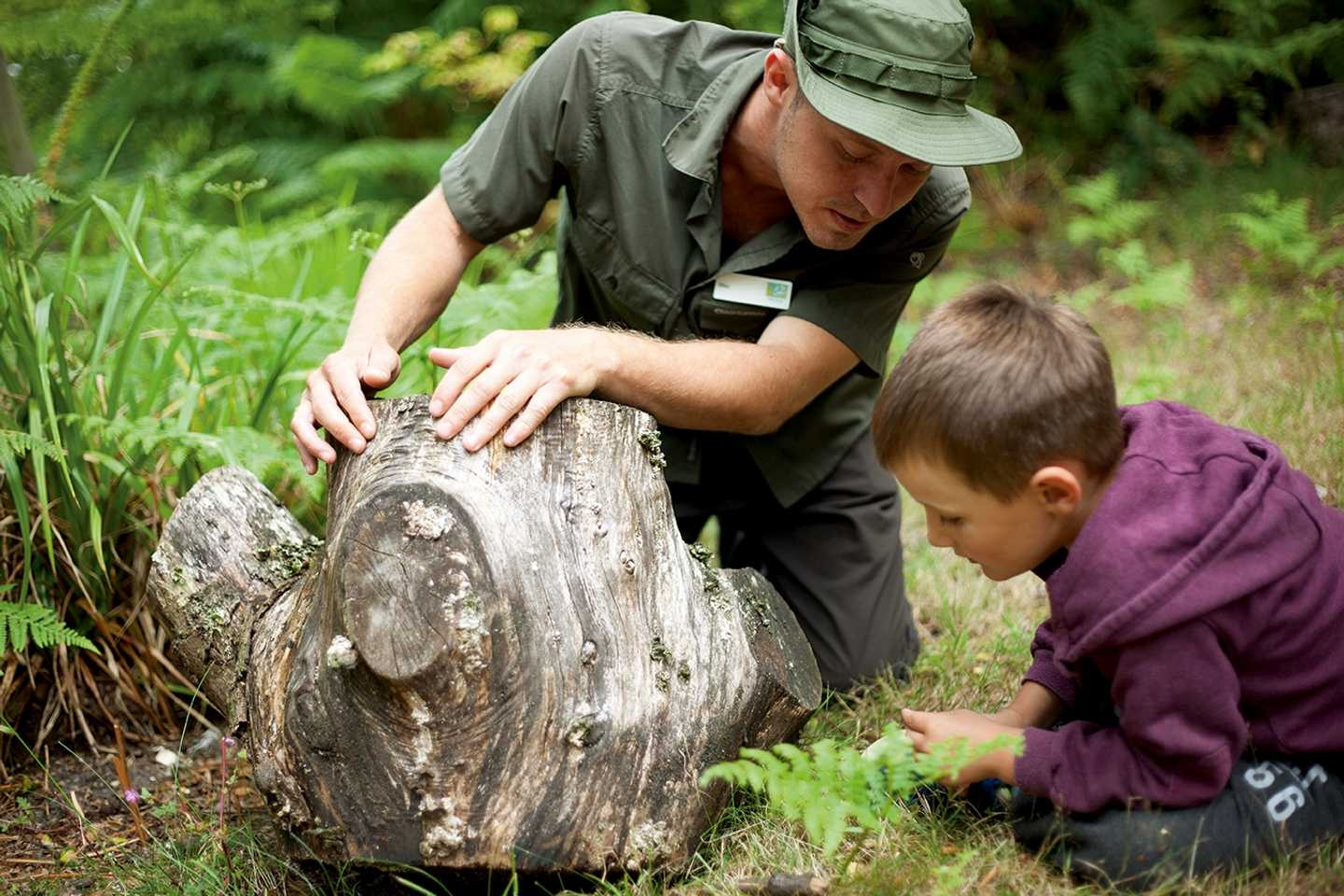 A Nature Rockz Ranger holding up a log so that a young boy can look underneath