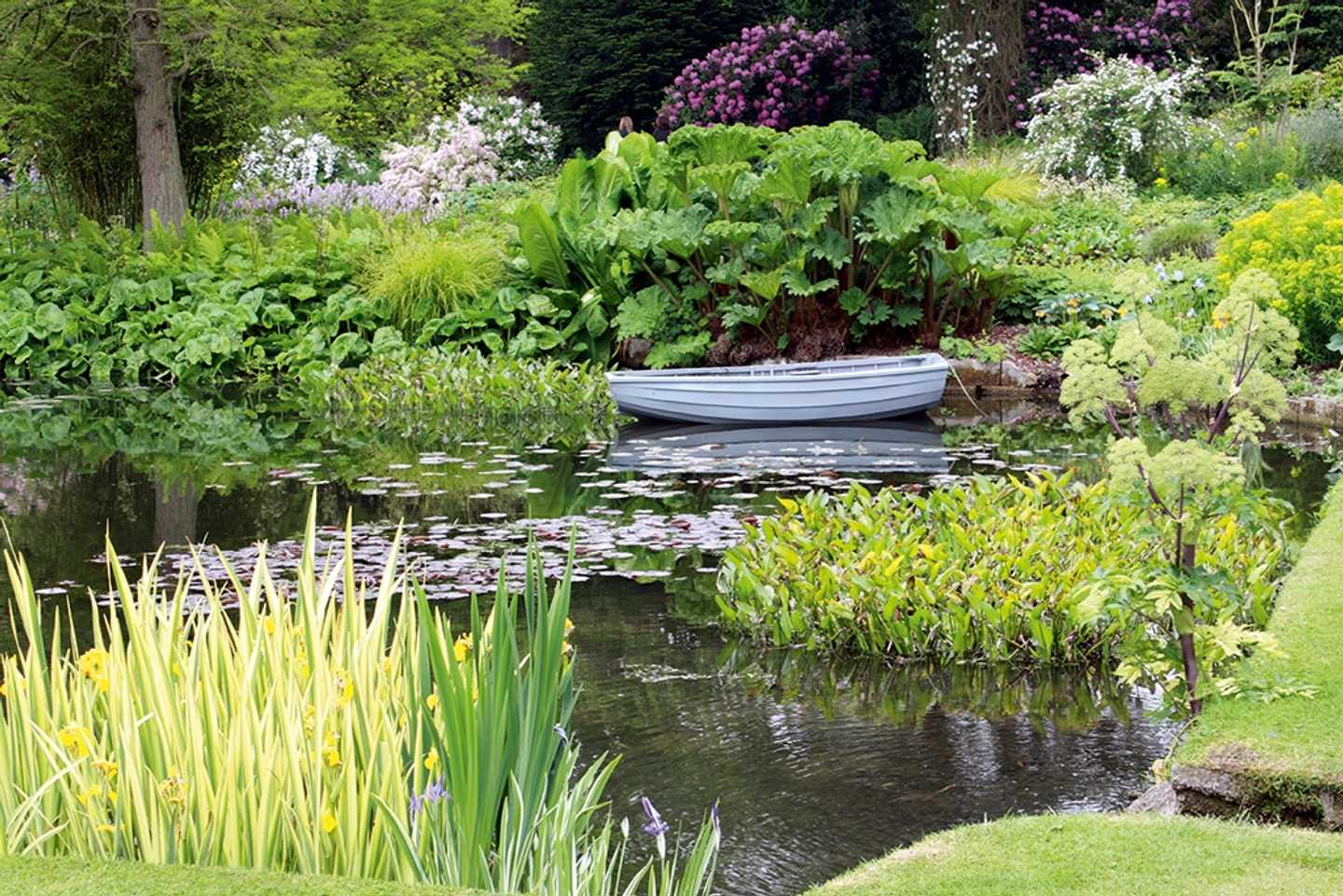 A boat on the lake in Beth Chatto Gardens