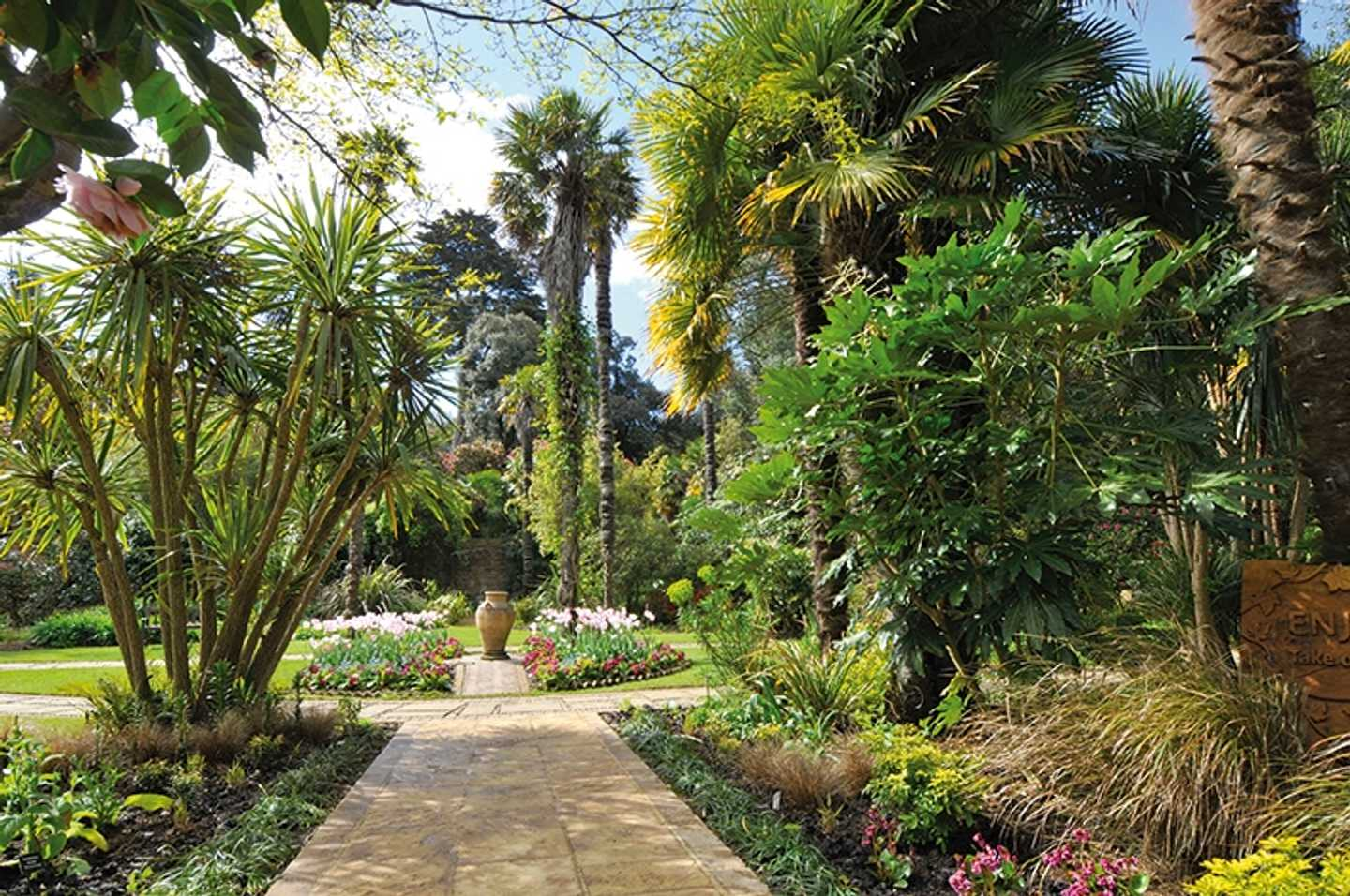 Walkway at Abbotsbury Subtropical Gardens