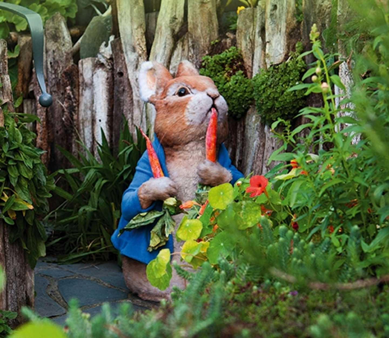 Peter Rabbit in the garden