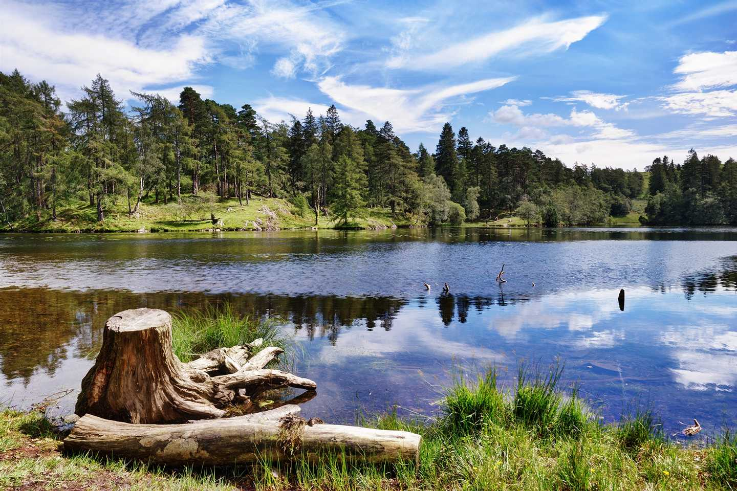 Picturesque Tarn Hows