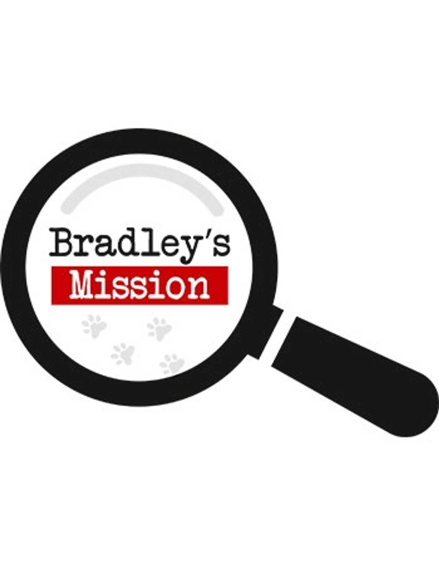 Bradley's Mission