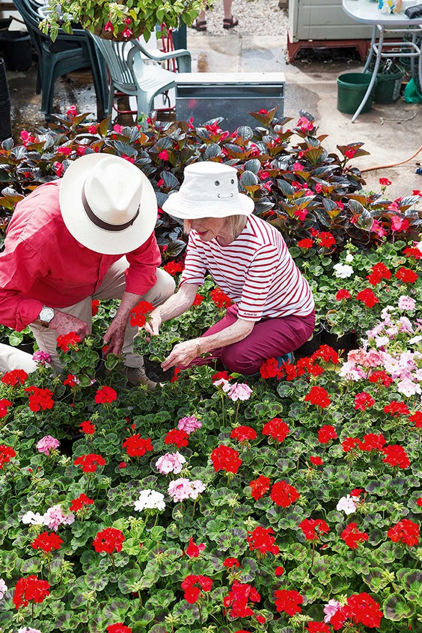 Two owners planting some flowers