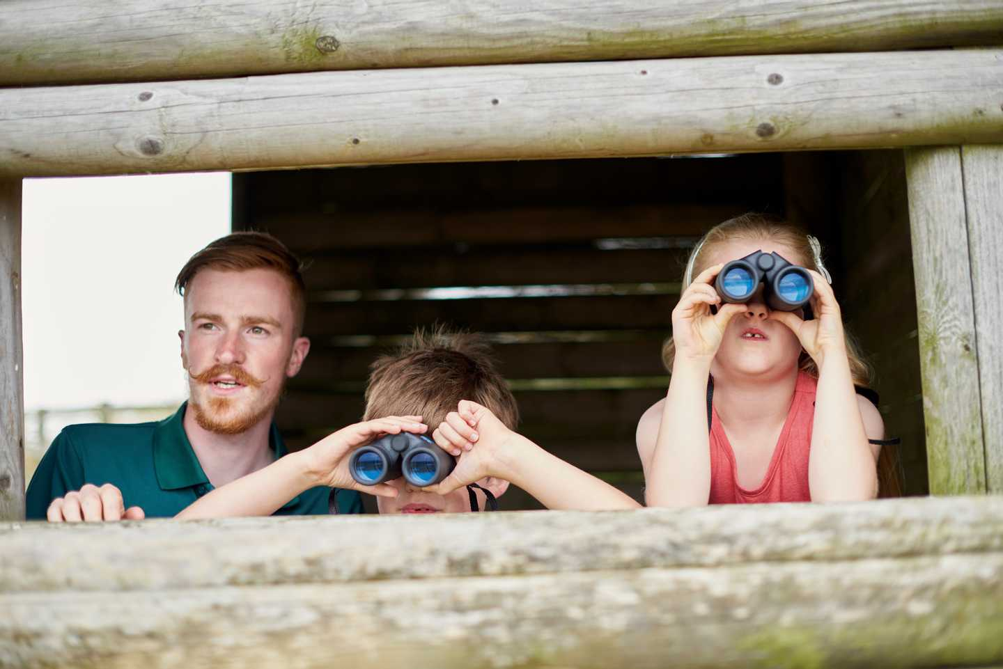 Guests watching birds from the hive through binoculars