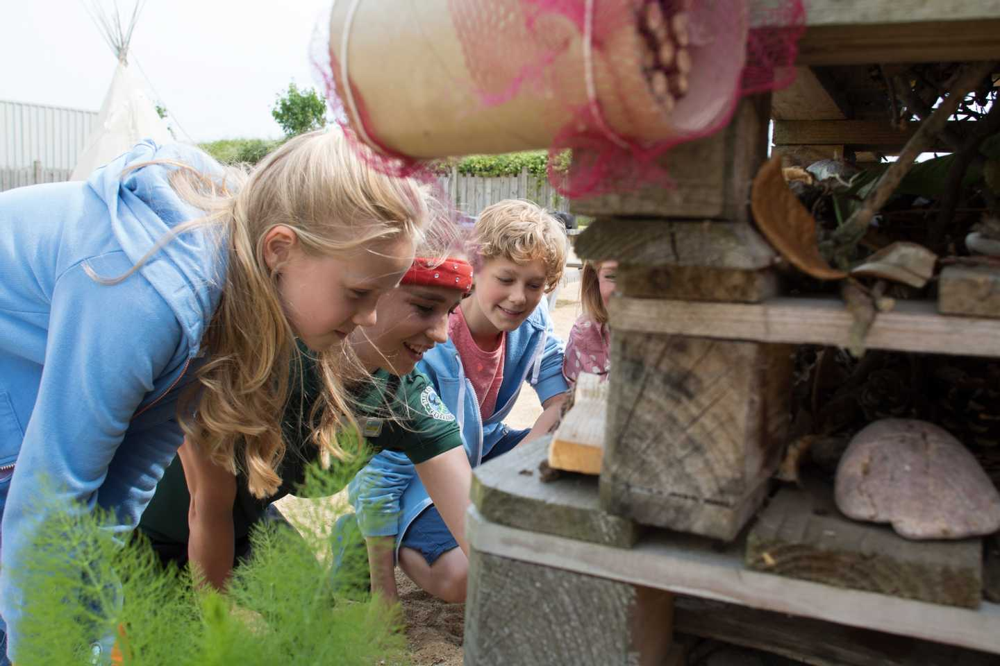 Children checking out the bug hotel