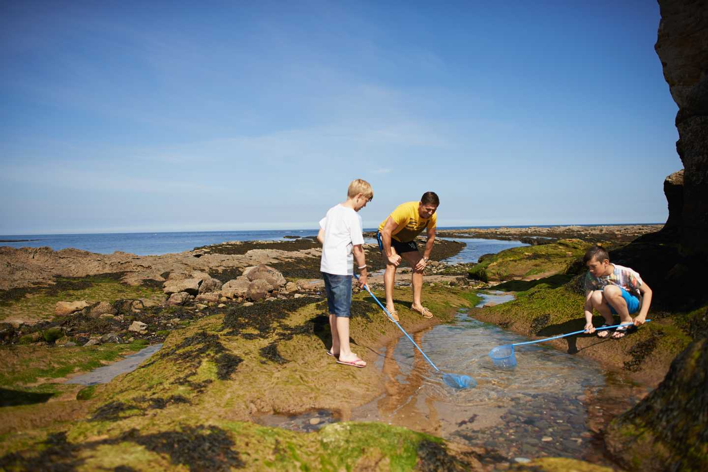 Kids and ranger studying rock pool
