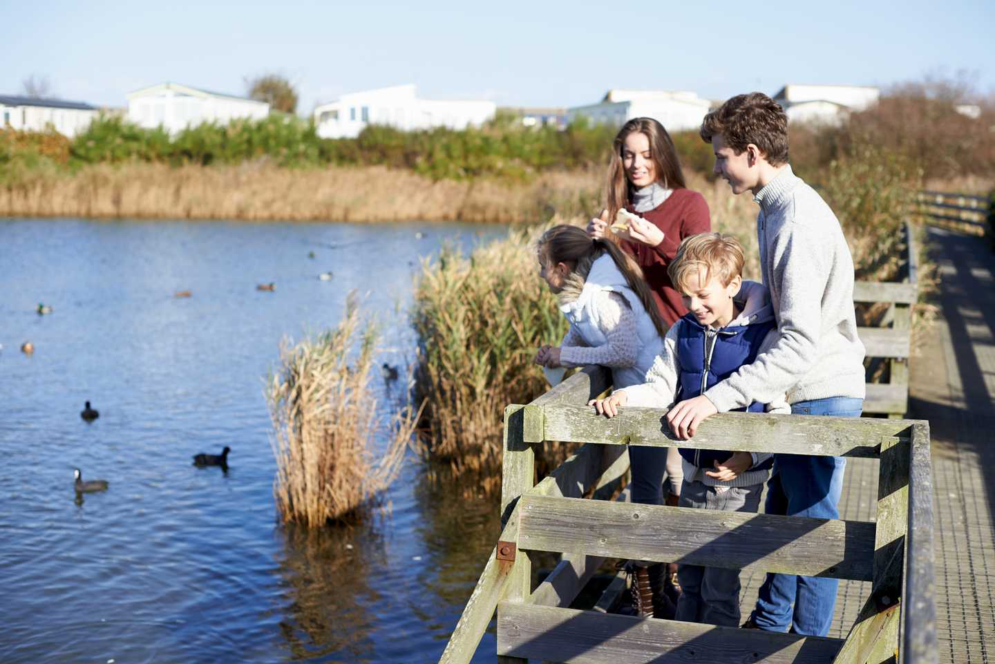 A family looking out over the lagoon, which is part of the nature reserve at Church Farm, watching the ducks