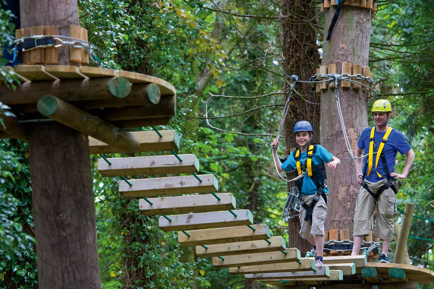 A young boy scaling the heights of the trees on Aerial Adventure