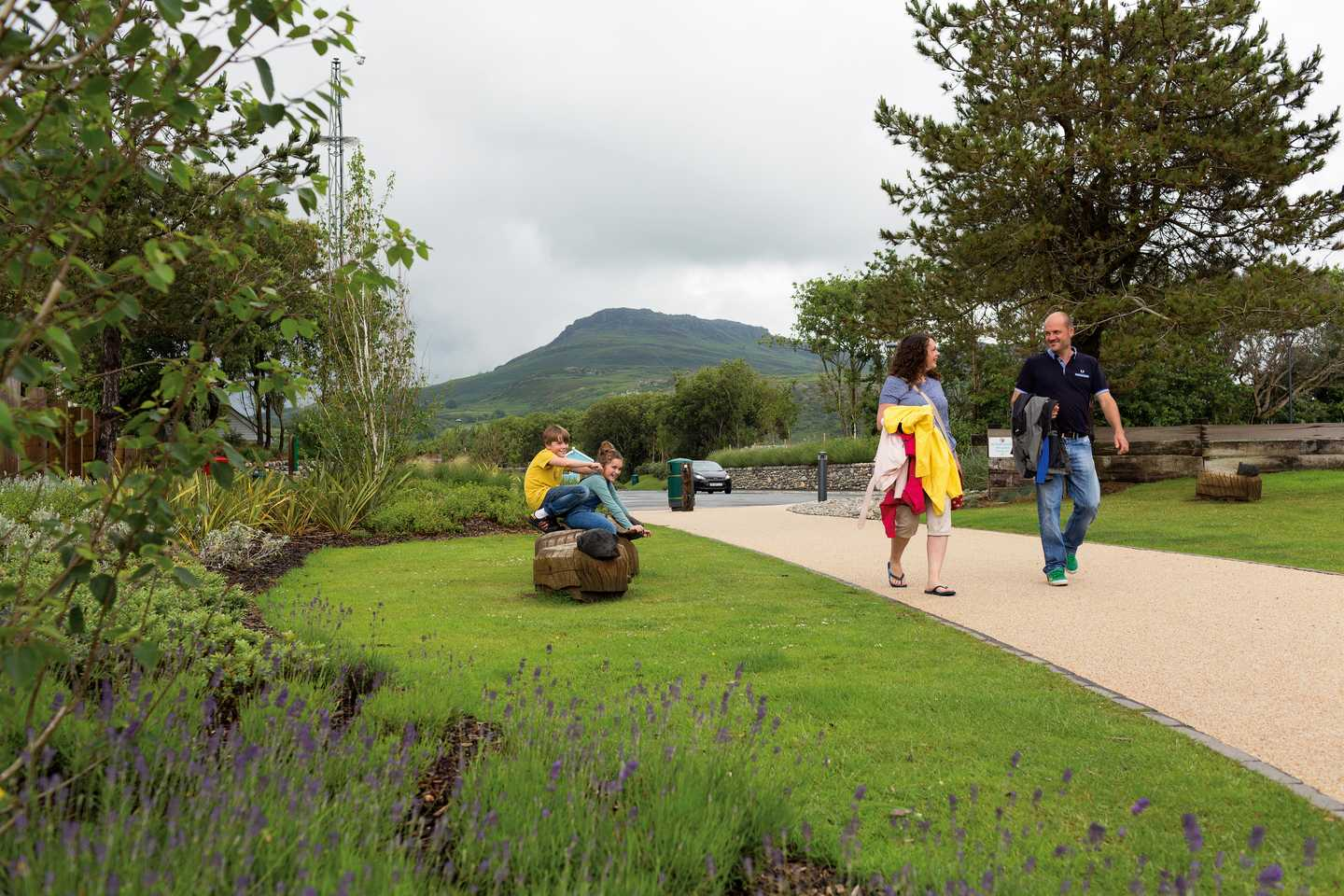A family walking through Greenacres Holiday Park with a tall, green mountain in the background and purple lavender plants in the flower beds