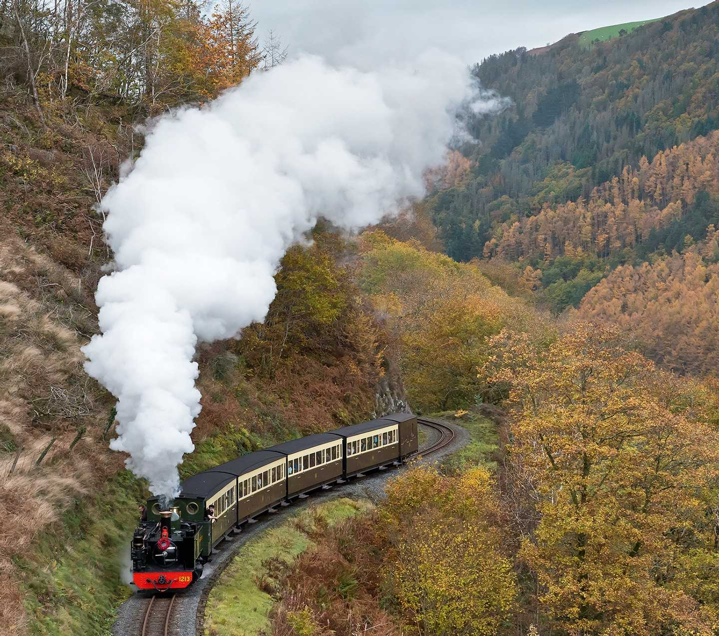 A steam train on the Vale of Rheidol Railway