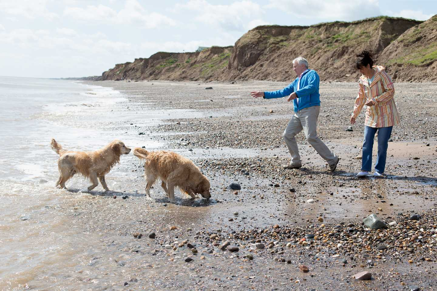 A couple playing with their two dogs on the beach