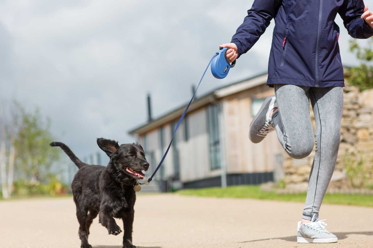 A woman taking her dog for a run